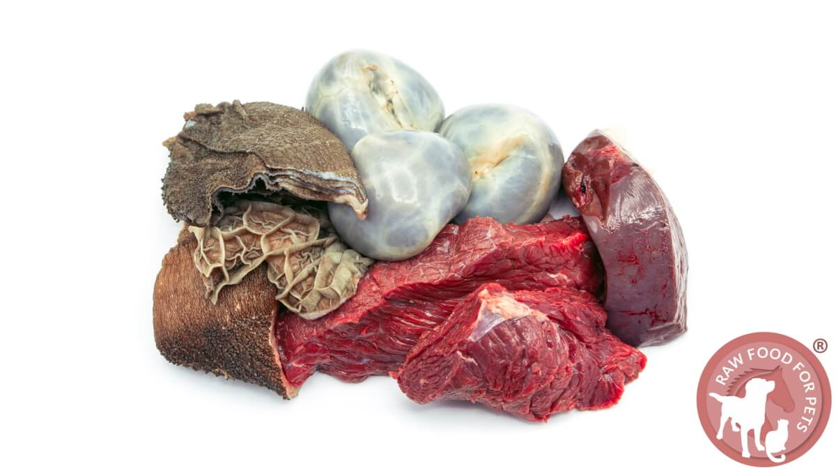 Offal Super Foods for Cats and Dogs